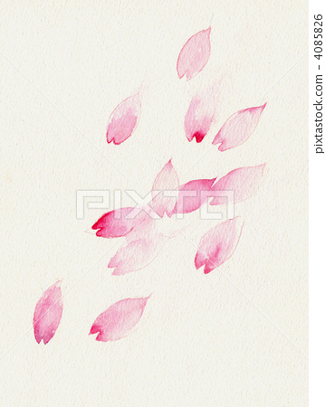 Cherry blossom petals dancing in the wind 4085826