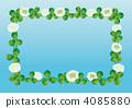 White clover 4085880