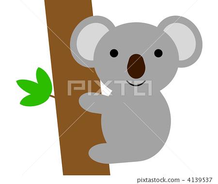 Koala 4139537