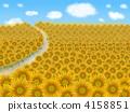 해바라기 밭 4158851