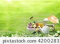 field, flower, garden 4200283