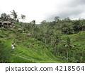 บาหลี,อินโดนีเซีย,ทวีปเอเชีย 4218564
