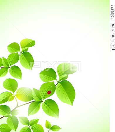 background with green branch 4263578