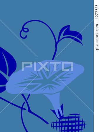 flower, flowers, japanese morning glory 4277383