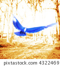 Blue Bird, bird, birds 4322469