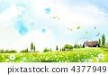 grass, field, grassland 4377949