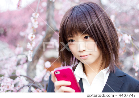 垂懸的梅花/商務女人/樂趣/手機/女人 4407748