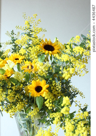 flower arrangement, flower arrangements, mimosa 4436487