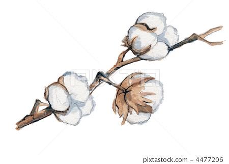 cotton tree  cotton  cotton plant stock illustration tree silhouette clipart black and white tree silhouette clip art free