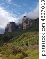 Guillana ที่ราบสูง Roraima 4637013