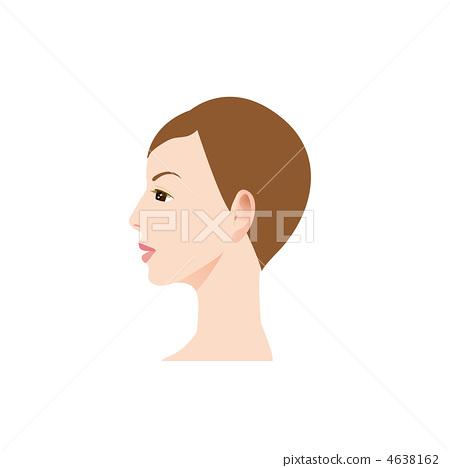 婦女的外形的例證 4638162