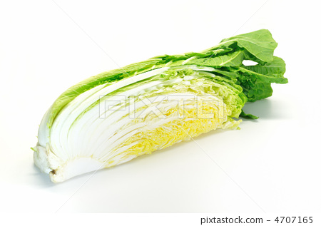 White cabbage with white background 4707165