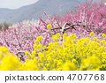 Colors of spring 4707768