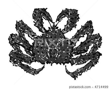 Fish crab 4714499