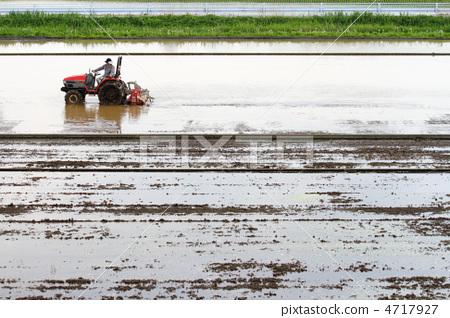 準備稻田 稻田 水稻種植 4717927