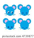 mouse rat face 4739877