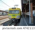 tenderstem broccoli, nagareyama line, ryusan line 4742113