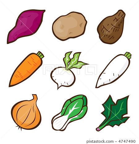 矢量 蔬菜 根菜类 4747490