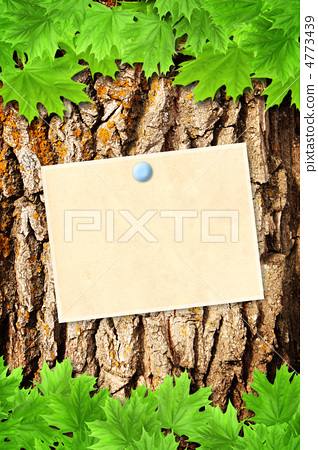 Nature message 4773439