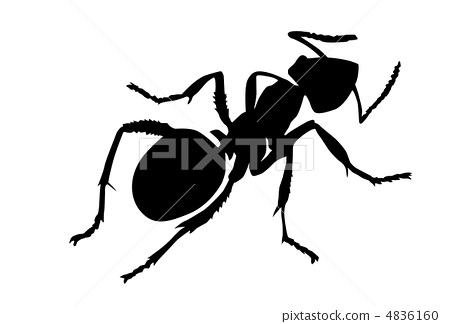 vector silhouette ant on white background 4836160
