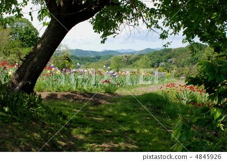 Hill Road Gunma Prefecture 4845926