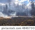 fire in wood 4846700