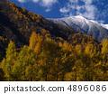 Oshigeyama山冠 4896086