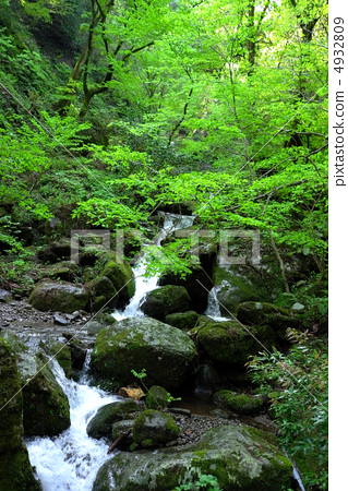 三徳山 계류 4932809