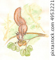 Squirrel on a tree. watercolor 4953221