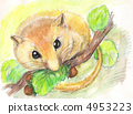 dormouse. watercolor 4953223