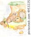 Nutria. watercolor 4953225