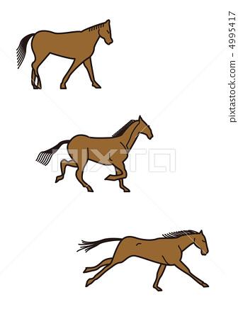 Stock Illustration: animal, horse, equine