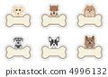 Dog / Nameplate 4996132