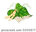 Kidney ( soy ) beans with leaves on white background. Vector eps 5005877