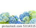 開花 花卉 花朵 5014315