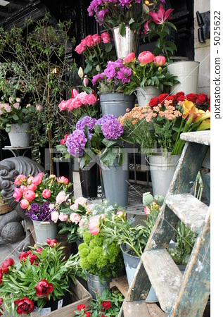 British florist 5025622