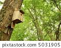 a, box, birdhouse 5031905