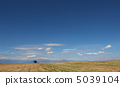 desert landscape with lone tree 5039104