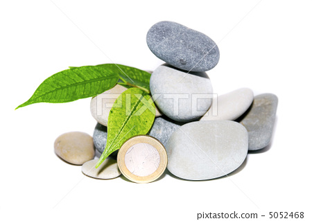 A heap of stones, leaves and coins 5052468