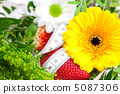 background of red big juicy ripe strawberry and flower 5087306