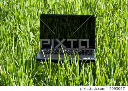 laptop in green grass 5093067