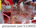 Goldfish scooping 5114955