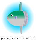 翻車魚 鰭 魚翅 5147660