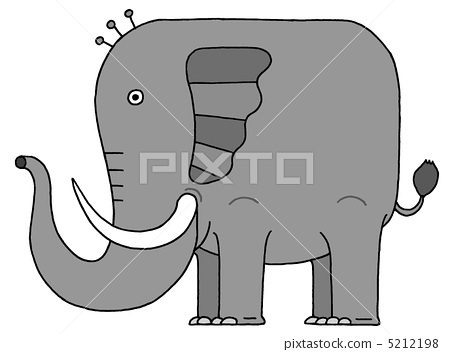 elephant 5212198
