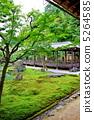 Nanzenji Rokubo garden 5264585