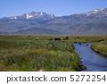 雪山 山脈 大農場 5272254