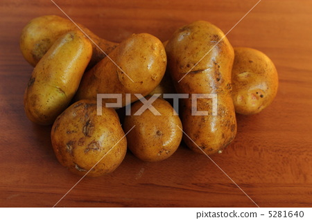 감자 메이 퀸 5281640