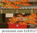 Kiyotaki Autumn leaves' tea house 5283517