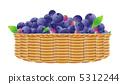 fruit, blueberries, blueberry 5312244