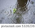 雨 5326236